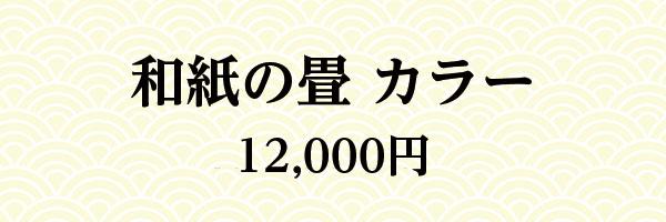 和紙の畳 カラー 12,000円